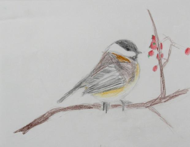 fat_bird
