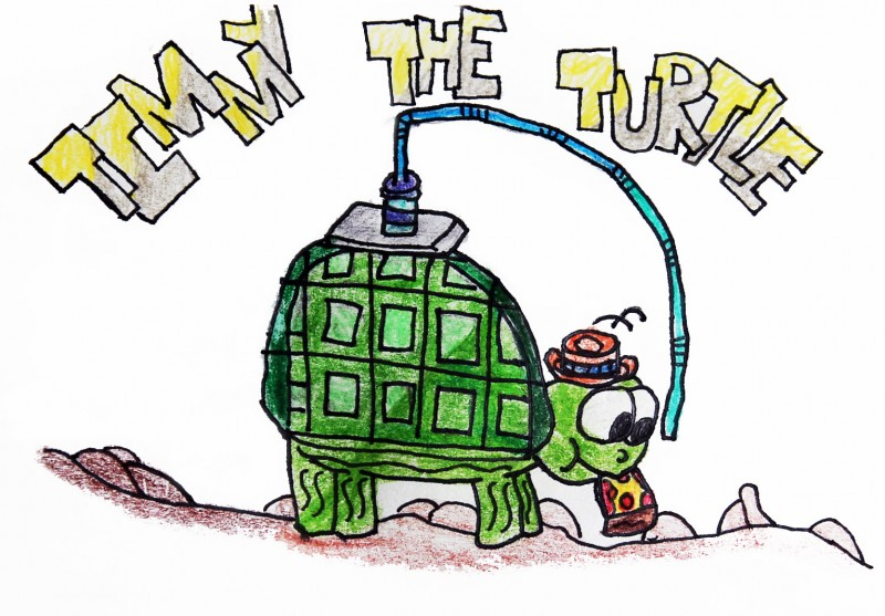 Timmy_the_Turtle